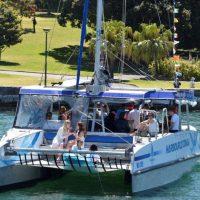 Sydney Harbour Cruise Boat Harbour Cat