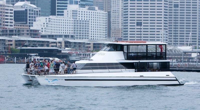 boat hire sydney harbour, sydney harbour cruise, boat cruise hire sydney